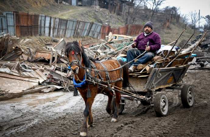 Horses left to starve after Romania bans carts from the roads