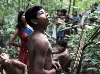 'They're killing us': world's most endangered tribe cries for help